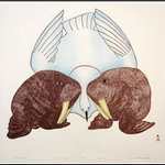 Walrus and Bird